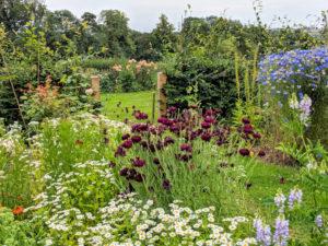 British Flower Week Workshop @ Scotch Lodge Farm
